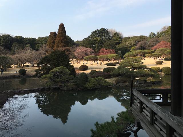 20170801_庭園001